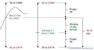 Hedging strategies of Forex